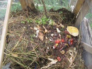 compost pile - Not at St. Albert's!
